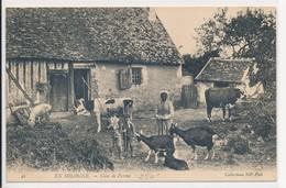 En Sologne - Coin De Ferme - Jeunes Vachers Vache Chèvre Et Cochon - Coll. ND Phot N° 94 - Chambord