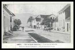 SANTA CATARINA -JOINVILLE - État De Santa Catharina-Une Rue De Joineville.()carte Postale - Florianópolis