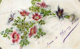 RAMILLETE DE FLORES CLAVEL DEL POETA / BOUQUET OF SWEET WILLIAM FLOWERS - POSTAL POSTCARD CIRCULATED 1905 -LILHU - Bloemen