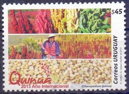 Used Uruguay 2013,Quinua - 2013 International Year Of Quinoa 1 V. - Uruguay