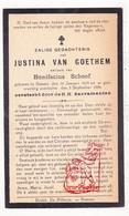 DP Justina Van Goethem ° Hamme 1859 † 1929 X Bonifacius Schoof - Devotieprenten