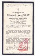 DP Elisabeth VanDiest ° Sint-Pieters-Leeuw 1853 † 1924 X JB. Tastenoe Xx P. Van Wilder Xxx V. Herremans - Devotieprenten