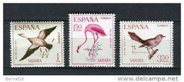 Sahara 1967 Edifil 262-64 ** MNH - Spanische Sahara