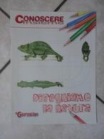 Conoscere Insieme - Opuscolo - Disegniamo La Natura -  IL GIORNALINO - Libros, Revistas, Cómics