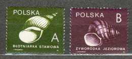 POLAND MNH ** 3078-3079 COQUILLAGES - 1944-.... République