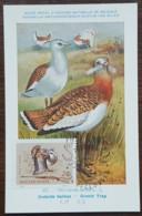 Hongrie - Carte Maximum / CM 1964 - Faune / Oiseaux / Outarde Barbue - Tarjetas – Máximo