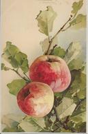 Fruit Pommes-MO - Fleurs, Plantes & Arbres