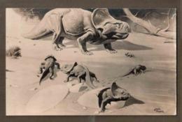 Postcard View Of Protoceratops, Plant Eating Dinosaurs Found In Gobi Desert Of Mongolia. Lot # SC 752 - Animals