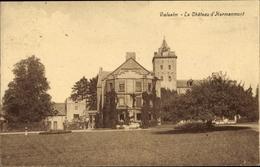 Cp Vielsalm Wallonien Luxemburg, Le Chateau D'Hermanmont - Belgique