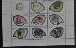 ARUBA 2012 ++   SERIES ++ KATTEN CATS CHAT KATZE  MNH POSTFRIS ** - Curaçao, Nederlandse Antillen, Aruba