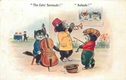 TE CATS SERENADE! Chats Musiciens (comique Série) - Chats