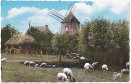 35. Pf. LE MONT-DOL. Le Moulin Du Tertre. 13 - Autres Communes