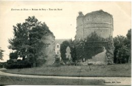CPA -  BLOIS (ENV.) - RUINES DE BURY - TOUR DU NORD (ETAT PARFAIT) - Blois