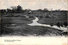 THE PITCH LAKE ,LA BREA TRINIDAD ,PERSONNAGES   REF 58330 C - Trinidad