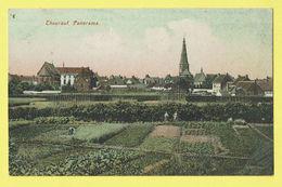 * Torhout - Thourout * (Edit Th. Samyn - De Borchgrave) Panorama, Couleur, Kleur, TOP, Unique, Jardin, Tuin, église - Torhout