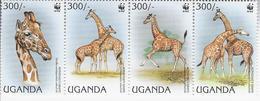 Giraffen - Ouganda (1962-...)