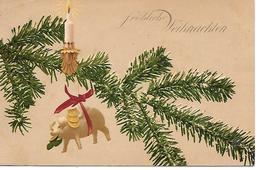 Weihnachtszweig, Kerze, Schwein, Branche De Noel, Bougie, Cochon, Christmas Branch, Candle, Pig - Noël
