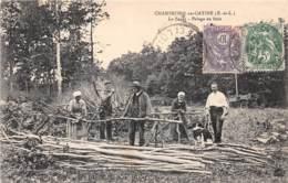 28 - Eure Et Loir / 10048 - Champrond En Gatine - Pelage Du Bois - Beau Cliché Animé - Francia