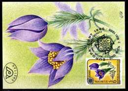 X1992)Maximumkarte Österreich 1848 Cept / Blumen - Maximumkarten (MC)