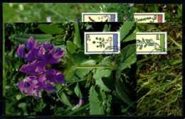 X2111)Maximumkarte Liechtenstein 1069/1072 Blumen - Cartoline Maximum