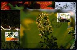 X2139)Maximumkarte Liechtenstein 1089/1092 Wein - Cartoline Maximum