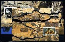 X2142)Maximumkarte Liechtenstein 1093/1095 Mineralien - Maximumkarten (MC)