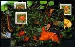 X2225)Maximumkarte Liechtenstein 1152/1154 Pilze - Maximumkarten (MC)