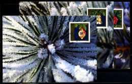 X2237)Maximumkarte Liechtenstein 1159/1161 Weihnachten - Maximumkarten (MC)
