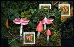 X2323)Maximumkarte Liechtenstein 1252/1254 Pilze - Maximumkarten (MC)