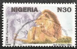 Nigeria  1992-93 Lion Used - Nigeria (1961-...)