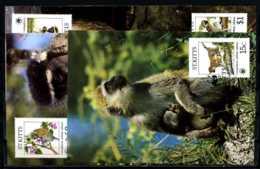 X2529)St. Kitts Maxi-Karte 184/7 WWF 43 Grüne Meerkatze - W.W.F.