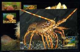 X2765)Alderney Maxi-Karte 61/4 WWF 152 Meeresfauna - Alderney
