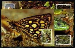 X2781)Jersey Maxi-Karte 480/3 WWF 80 Tiere - Jersey