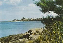 BARFLEUR  La Pointe De Barfleur Vue De Crabet - Barfleur