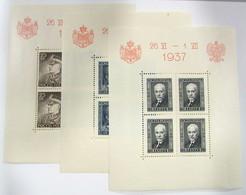 Polonia HB 2/4 ** - Blocks & Sheetlets & Panes