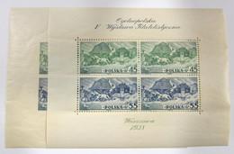 Polonia HB 5(2) ** - Blocks & Sheetlets & Panes
