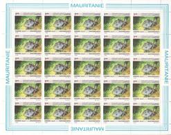 Mauritanie - Feuille De 25 Timbres 603 - BUZIN - Poissons - Baliste , Poisson-Gachette - Mauritanie (1960-...)