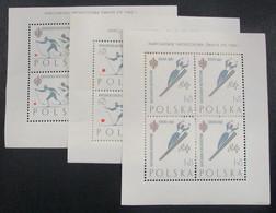 Polonia HB 28/30 ** - Blocks & Sheetlets & Panes