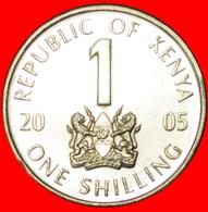 # COCK (2005-2010): KENYA ★ 1 SHILLING 2005 MINT LUSTER!  LOW START ★ NO RESERVE! - Kenya
