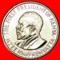 # COCK (2005-2010): KENYA ★ 1 SHILLING 2010 MINT LUSTER!  LOW START ★ NO RESERVE! - Kenya