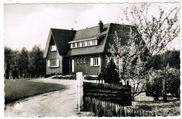 Dilsen, Driepaal, Familie Pension, Denneborg (pk52475) - Dilsen-Stokkem