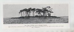Ile Arz îlot Cabane écroulée Océan Pacifique 1935 - Ohne Zuordnung