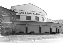 FONTES - Cave Coopérative - France