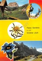 Cartolina Passo Gardena 2 Vedute - Bolzano