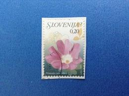 2007 SLOVENIA SLOVENIJA FRANCOBOLLO USATO STAMP USED PRIMULA PIANTA FIORE 0,20 - Slovenia