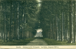 Seneffe - Château De M. Philippson - La Drève, Longueur De 600 M. : 1913 - Seneffe