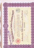 Action De 500 Cents Francs Sté Industrielle De Chimie D'EXTRËME-ORIENT - PARIS - 1922 - Industry