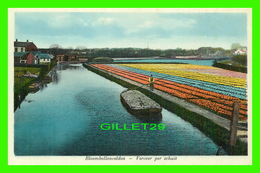 THE HAGUE, PAYS-BAS - BLOEMBOLLENVELDEN, VERVOER PER SCHUIT - ANIMATED - WEENENK & SNEL - - Den Haag ('s-Gravenhage)