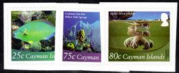 Cayman Islands 2012 Marine Life Self-adhesive Unmounted Mint. - Cayman Islands