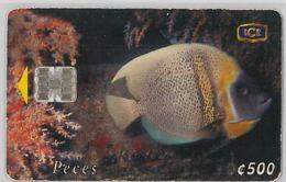 PHONE CARD - COSTA RICA (E31.8.1 - Costa Rica